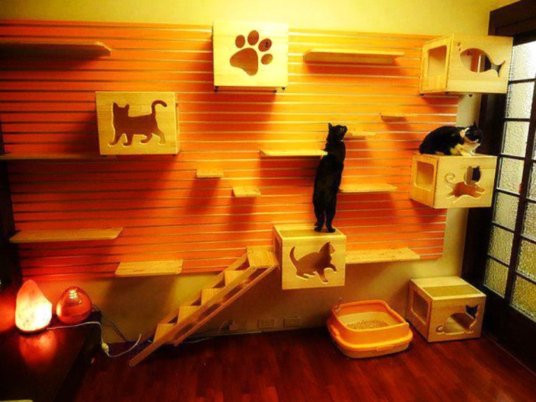 Creative-Decor-for-cats-1